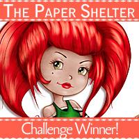 TPS_ChallengeWinner3