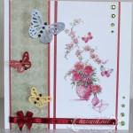 card256_1